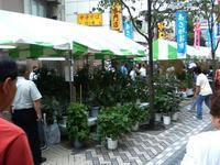 070707八王子祭り野菜P1000017.jpg